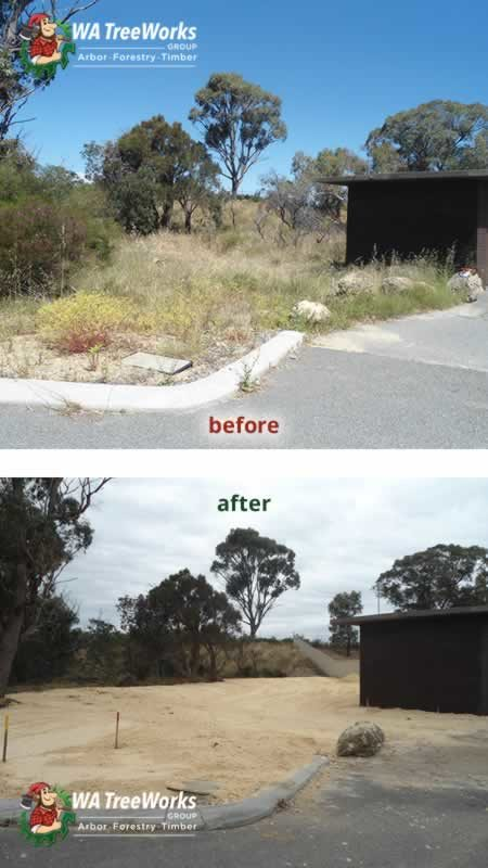 photo asset protection before after