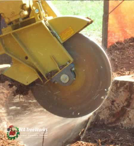 photo stump grinding