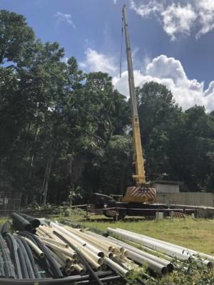 CI Tree removal 2